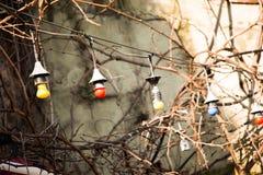 ampoules accrochant sur un endroit fixe Photos libres de droits