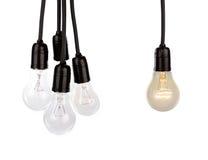 Ampoules accrochantes Photographie stock libre de droits