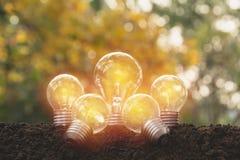 Ampoules avec rougeoyer Idée, créativité et énergie solaire concentrées Photographie stock