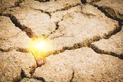 Ampoules avec rougeoyer Idée, créativité et énergie solaire concentrées Photos libres de droits