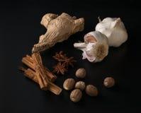 Ampoules d'ail, de noix de muscade, d'étoiles d'anis et de bâtons de cannelle sur un bl photographie stock libre de droits