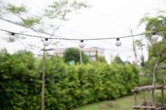 Ampoules de câble par ficelle sur le fond de jardin photos stock