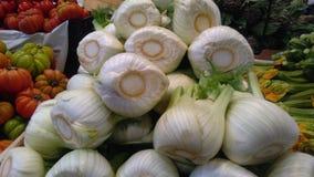 Ampoules de fenouil sur le marché d'agriculteurs Photo libre de droits