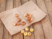 Ampoules de glaïeul sur une table en bois Photo stock