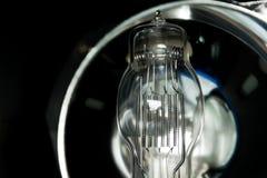 Ampoules incandescentes Images libres de droits