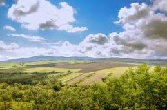 Ampuła chmurnieje nad łąkami i polami Fotografia Royalty Free