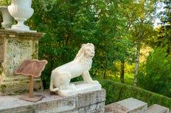 Ampuła dryluje schody i rzeźbę lew na piedestale w Pavlovsk parku, St Petersburg, Rosja Zdjęcia Stock