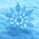 ampuła snow płatek śniegu Fotografia Royalty Free