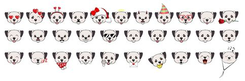 Ampuła ustawiająca głowy mali psy z różnymi emocjami i różnymi przedmiotami psia anatolian shepherd royalty ilustracja