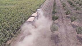 Ampuły ciężarówki transportu adra od pola widok z lotu ptaka zdjęcie wideo