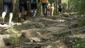 Ampuły grupa atleta bieg jeden za inny na halnym śladzie wśród skał zdjęcie wideo
