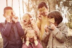 Ampuły grupa dzieci Szczęśliwi dzieci robi cipie stawiać czoło unde Fotografia Stock