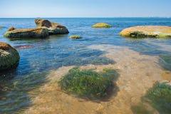 ampuła kamienie w wodzie zanieczyszczenie zielona nutowa woda Fotografia Stock