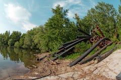 Ampuła piszczy bieg w jezioro Zdjęcia Royalty Free