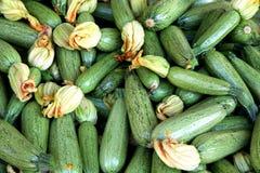 Ampuły grupa zucchini Fotografia Royalty Free