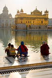 amritsar guld- india punjab tempel royaltyfri bild