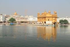 amritsar guld- india punjab tempel Royaltyfria Foton