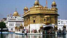 amritsar guld- india solnedgångtempel Royaltyfria Bilder