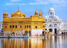 amritsar guld- india solnedgångtempel royaltyfri fotografi