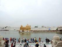 amritsar guld- india solnedgångtempel Royaltyfri Foto