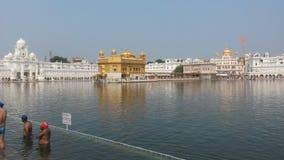 Amritsar guld- tempel royaltyfri foto