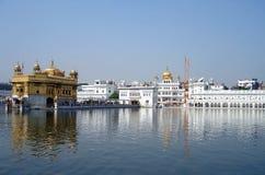 amritsar guld- tempel Royaltyfria Bilder