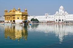 Amritsar guld- tempel, Indien Arkivbild