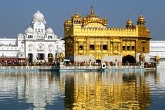 Amritsar guld- tempel, Indien Arkivfoto