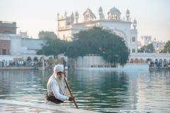 26 Amritsar Luty 2018, India stary sikhijczyk czyści jeziorną niedaleką złotą świątynię obraz royalty free