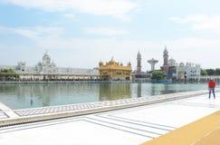 Amritsar Punjab goldent świątynni powikłani ind Obraz Royalty Free