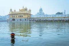 Sikh devotee & x22;Nihang Warrior& x22; taking bath in pond in front of Golden Temple royalty free stock photography