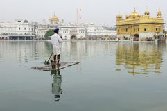 Amritsar, templo dourado, Índia Imagens de Stock