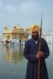 amritsar złota ind Punjab świątynia obraz royalty free