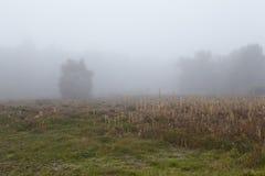 Amrum (德国) -环境美化在雾 免版税库存图片