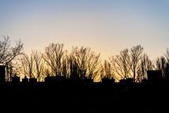 Amstelveen - Holland Royaltyfri Bild