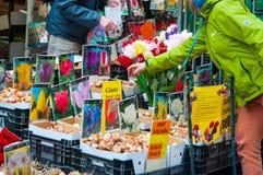 AMSTERDÃO 28 DE ABRIL: A loja vende bulbos do houseplant da abundância no mercado em abril 28,2015 da flor de Amsterdão, os Paíse Foto de Stock Royalty Free