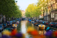 Amsterdam. Beautiful canal in Amsterdam, The Netherlands. Taken with tilt and shift lens Royalty Free Stock Image