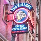 27 Amsterdam-APRIL: De Buldog coffeeshop uithangbord van Amsterdam in rosse buurt op 27,2015 April, Nederland Royalty-vrije Stock Foto's