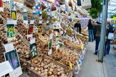 28 Amsterdam-APRIL: De lokale winkel biedt verschillende soorten bollen op de de Bloemmarkt van Amsterdam op aan 28,2015 April, N Royalty-vrije Stock Foto's