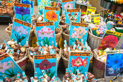 28 Amsterdam-APRIL: De lokale winkel binnen een rij van drijvende aken biedt bollen op de de Bloemmarkt van Amsterdam op aan 28,2 Stock Foto's
