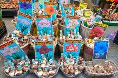 28 Amsterdam-APRIL: De winkel binnen een rij van drijvende aken biedt bollen op de de Bloemmarkt van Amsterdam op aan 28,2015 Apr Stock Afbeeldingen