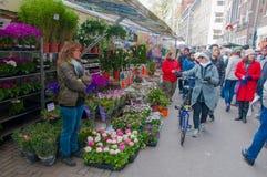 28,2015 Amsterdam-APRIL: De winkels binnen een rij van drijvende aken bieden bollen en houseplants op de de Bloemmarkt van Amster Royalty-vrije Stock Fotografie