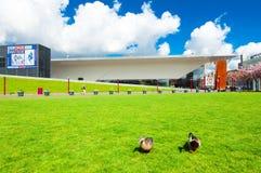 30 Amsterdam-APRIL: Paar van eenden op het Museumvierkant met Stedelijk-Museum op de achtergrond op 30,2015 April Royalty-vrije Stock Foto