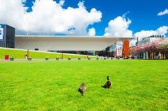 30 Amsterdam-APRIL: Paar van eenden op het Museumvierkant op 30,2015 April, Nederland Royalty-vrije Stock Afbeeldingen