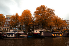 Amsterdam. Royalty Free Stock Photo