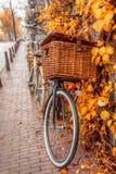 Amsterdam autumn Stock Photos