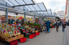 AMSTERDAM 28 AVRIL : Les petites boutiques offrent des plantes d'intérieur d'abondance et les ampoules sur la fleur d'Amsterdam l Photos stock