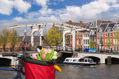 Amsterdam with basket of colorful tulips against canal in Holland Stock Images