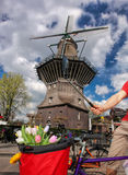 Amsterdam with basket of colorful tulips against old windmill in Holland. Famous Amsterdam with basket of colorful tulips against old windmill in Holland Royalty Free Stock Photo