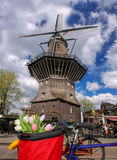 Amsterdam with basket of colorful tulips against old windmill in Holland. Famous Amsterdam with basket of colorful tulips against old windmill in Holland Stock Photography